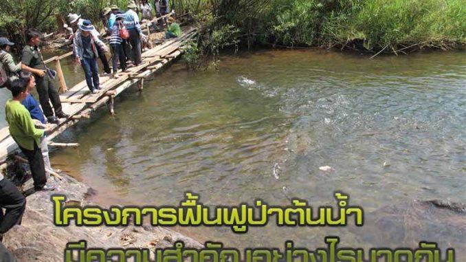 โครงการฟื้นฟูป่าต้นน้ำ