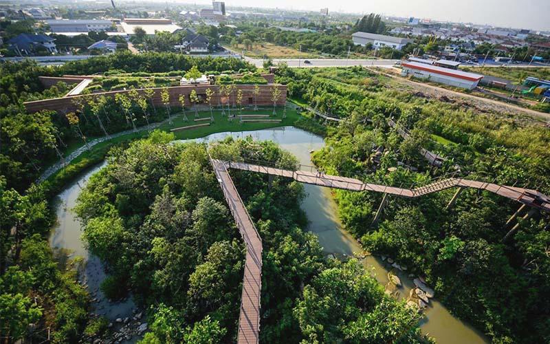 forest bangkokriver